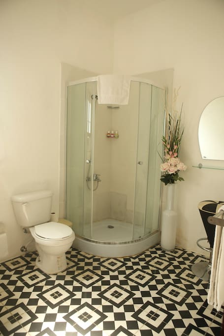 Pretty private bathroom with high pressure hot water
