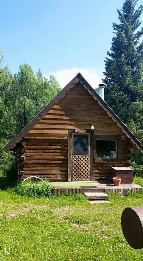 Green Snow Oasis Cortez Cabin