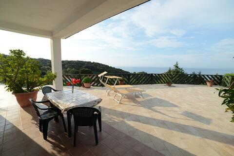 L'Olivo - Casa de vacances Il Serrone