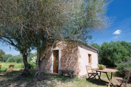Can Xeu - binissalem - Haus