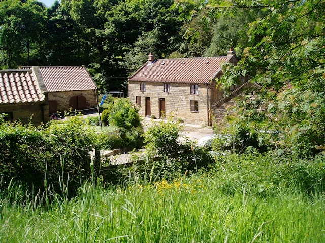 Beck Cottage, Raisdale, Chop Gate, N. York Moors - North Yorkshire - House
