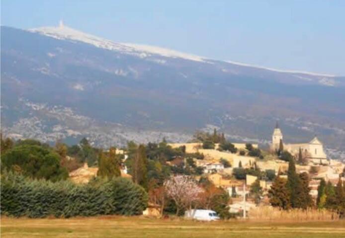 Studio Bedoin Mont Ventoux