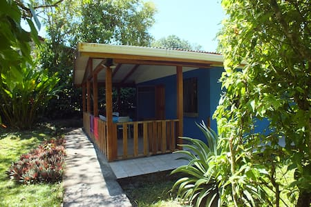 Set in a relaxing garden it is a private bedroom with a double bed and a bunk bed, with private bathroom and terrace with hammock. Wifi, daily maid service, tv, park and light breakfast included