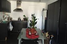 Cosy Studio in Brussels Center