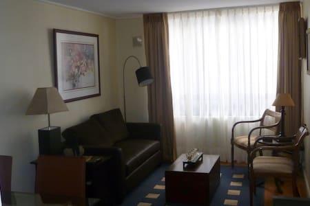 Acogedor departamento Bellas Artes - Santiago - Apartment