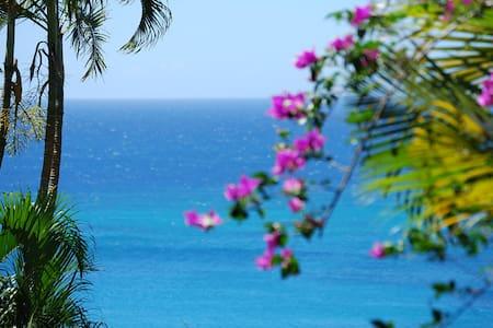 Caribbean Villa  with Sea view in Deshaies, GP - Deshaies