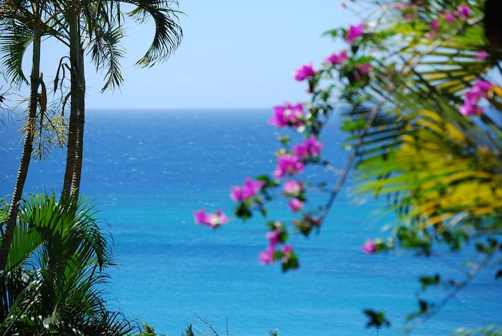Caribbean Villa  with Sea view in Deshaies, GP