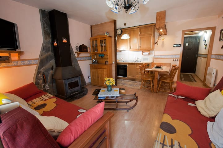 Apartment with one bedroom in Espot, with wonderful mountain view, enclosed garden and WiFi