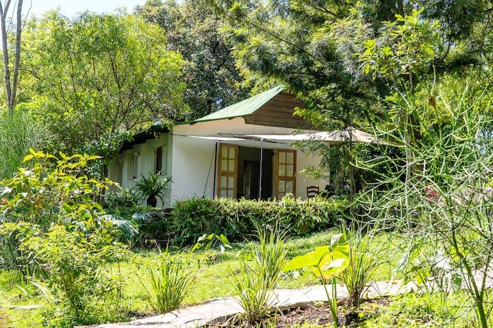 Small Farm Cottage at Ngare Sero