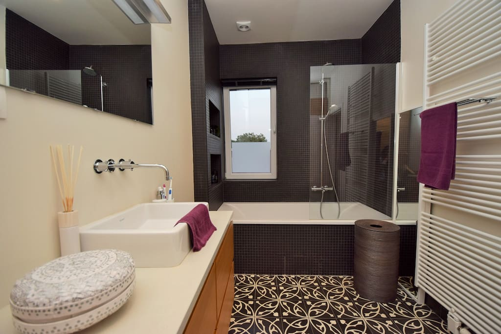 The bathroom with a nice big bath, shower, sink and big closet. Shampoo, conditioner, showergel, toothpaste and even demaquillant are provided. Anything a woman needs!