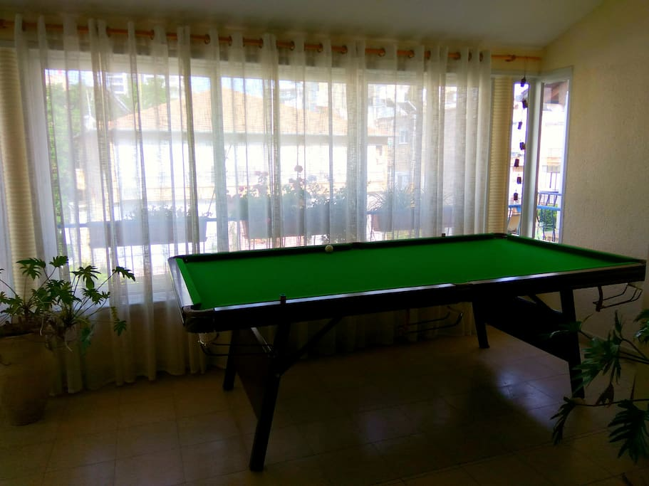 Our professional pool table