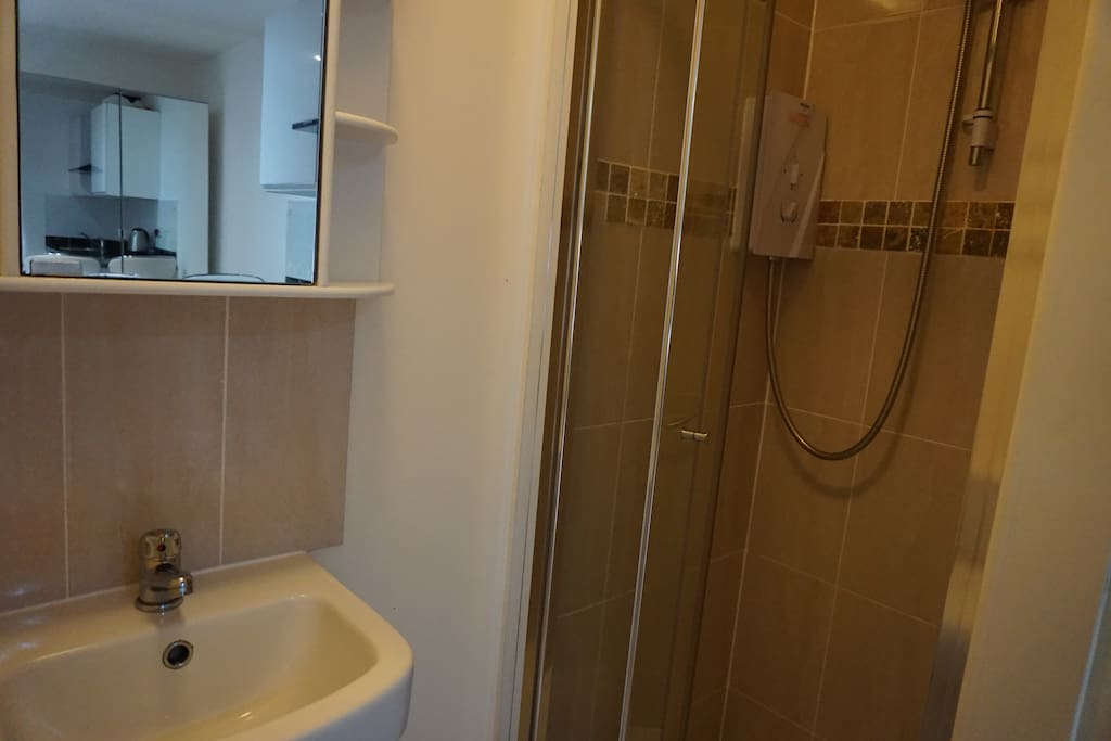 Ensuite bathroom, with shower, toilet and sink.