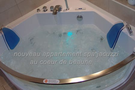 appartement spa privatif à beaune - Beaune - Appartement
