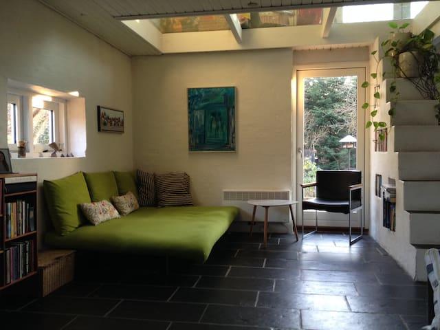 Dejlig villa med børnevenlig have - Brabrand - Dom