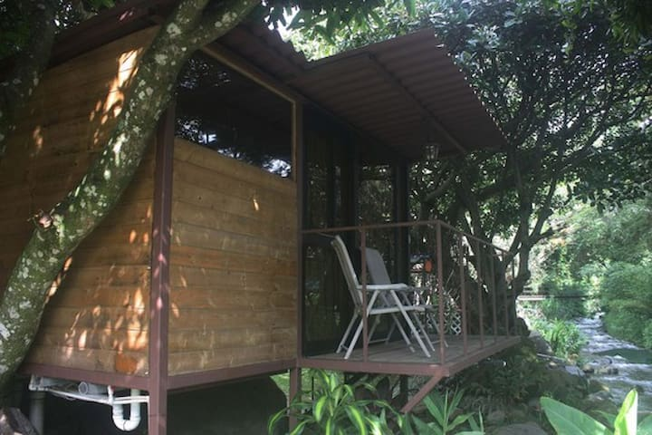 Tree House with balcony on the river - Bajo Boquete