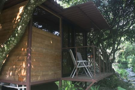 Tree House with balcony on the river - Bajo Boquete - Boomhut