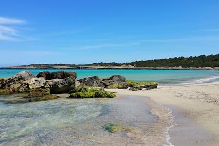 Beachfront apartment in Cala Nau - Cala Millor