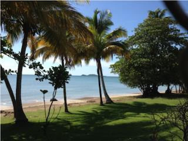 Relaxing Private Beach Villa - Naguabo