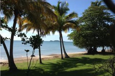 Relaxing Private Beach Villa - Naguabo - Huvila