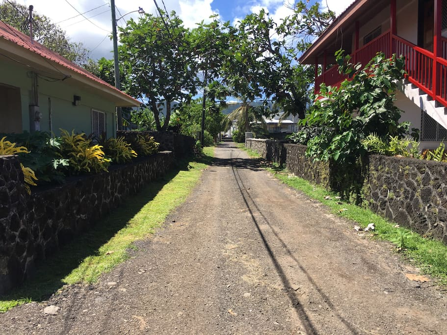 Houses On Rent In Samoa Island