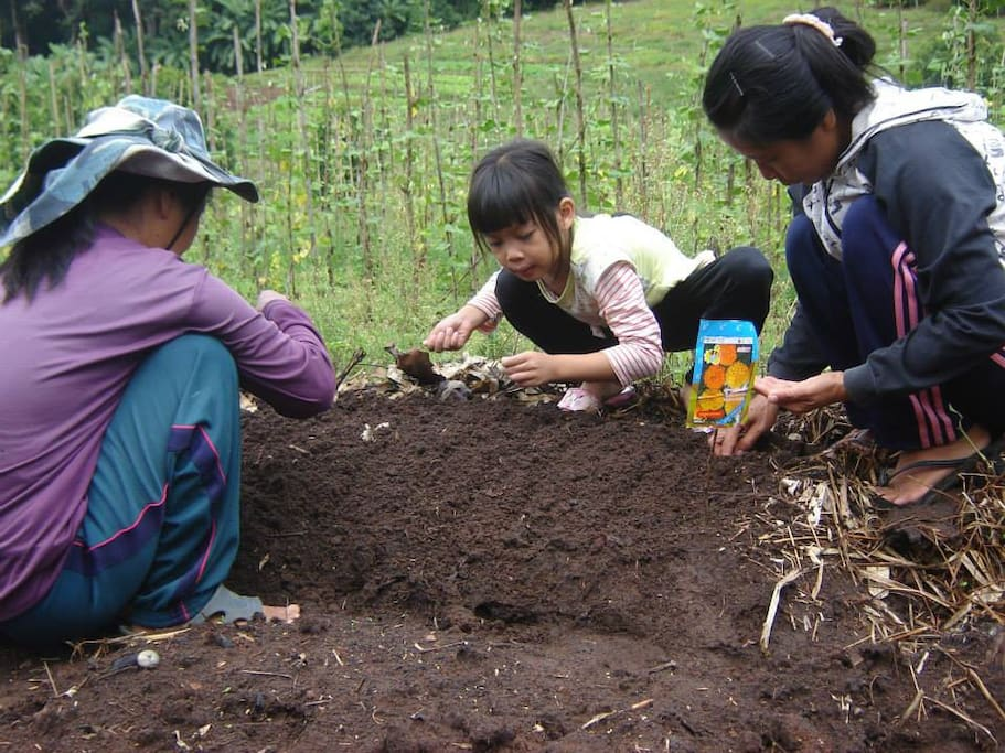 They are very happy for planting vegetables.