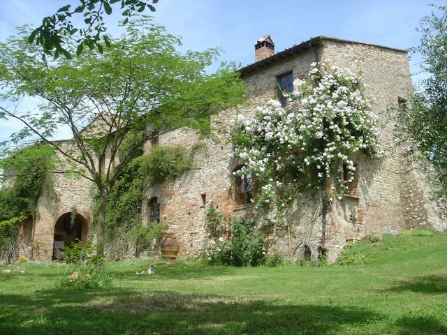 Old farmhouse on the Tuscan hills - Certaldo - Apartment