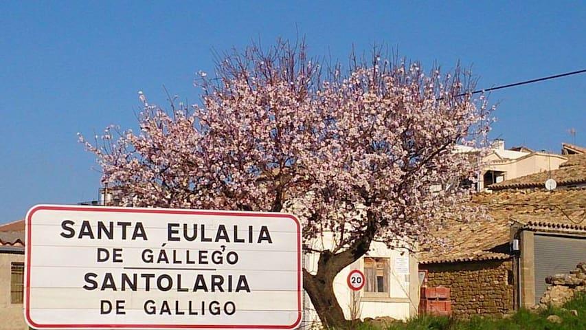 Guest House Felisa Private Room Prepirineo Aragon3 - Santa Eulalia de Gállego - Gästehaus