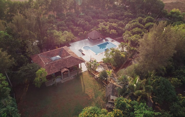 A peaceful property amidst a mango farm