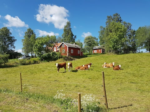 Lunden - a pearl of the countryside