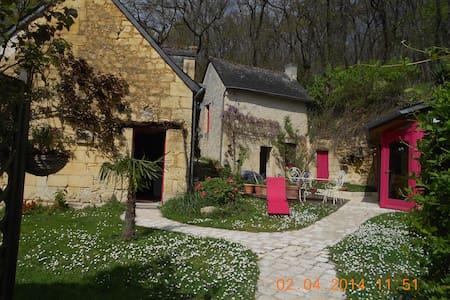 maison tourangelle,pleine de charme - La Roche-Clermault - Dům