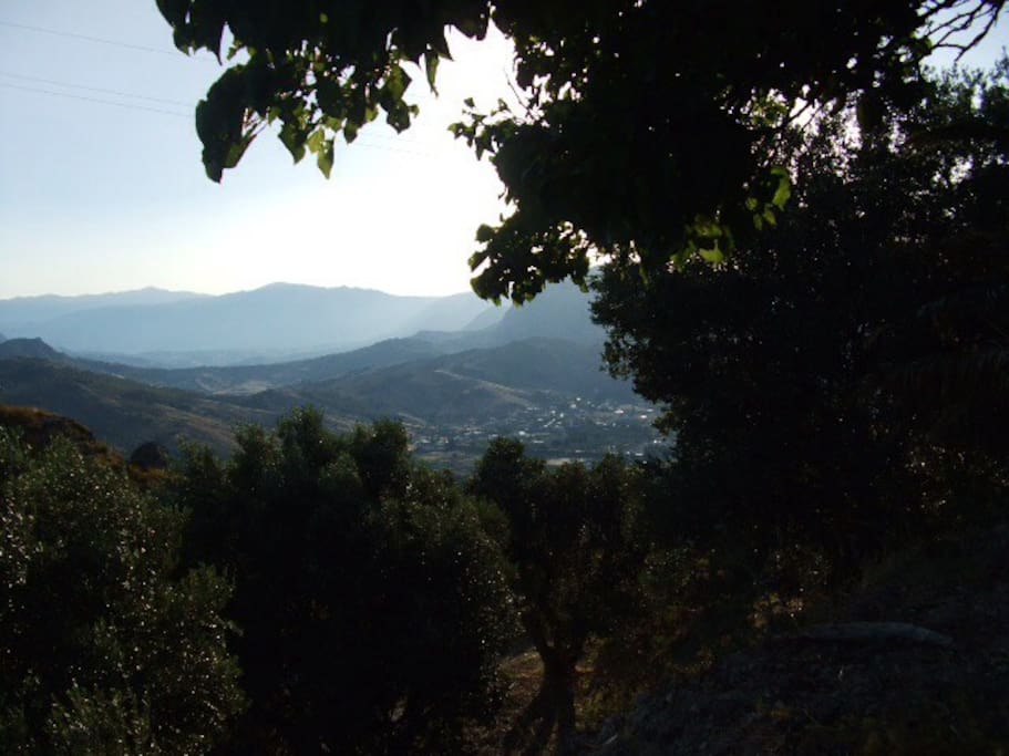 Vew of the mountains from the garden