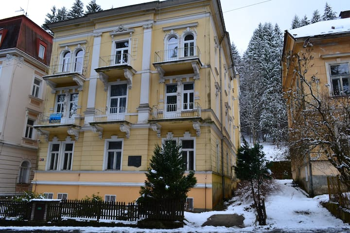 Квартира на улице Třebízského - Mariánské Lázně - Wohnung