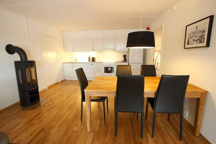 Nice flat near the skicenter and technologypark