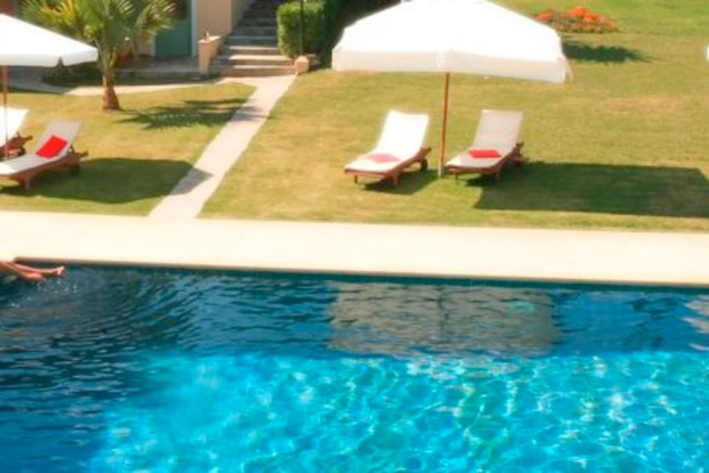 garden with swimming pool where this beautifull studio has direct access
