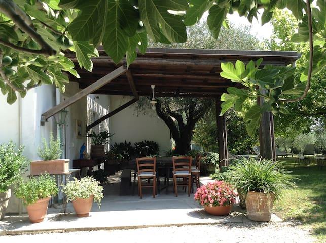 Camera magnolia bb Trecentolivi - Senigallia - Bed & Breakfast