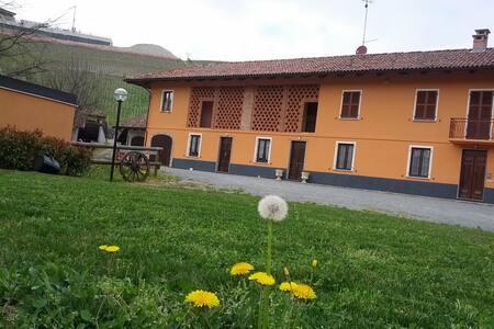 B&B La Sosta di Bacco, LA TANA - Castiglione Tinella (CN) - Bed & Breakfast