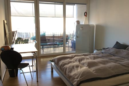 Room with private bathroom  - Appartement