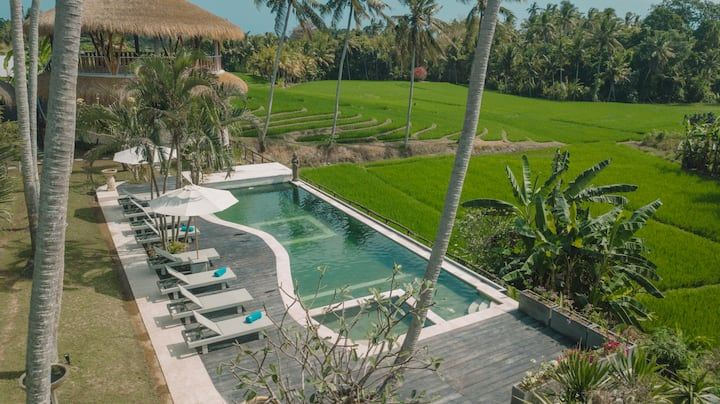 1 Bedroom Ricefield View in a Tranquil Yoga Resort