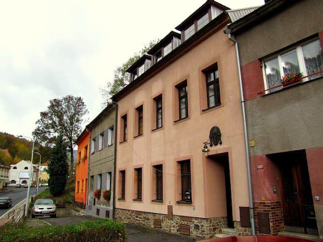 Penzion Pegas - pokoj č.1 - Jáchymov - Ház