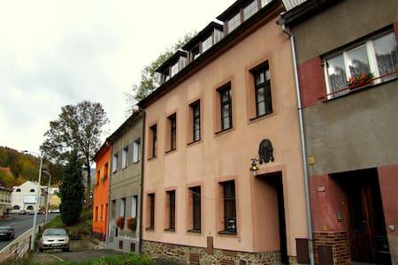 Penzion Pegas - pokoj č.1 - Jáchymov