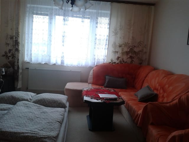 Comfortable cozy one room in Petržalka