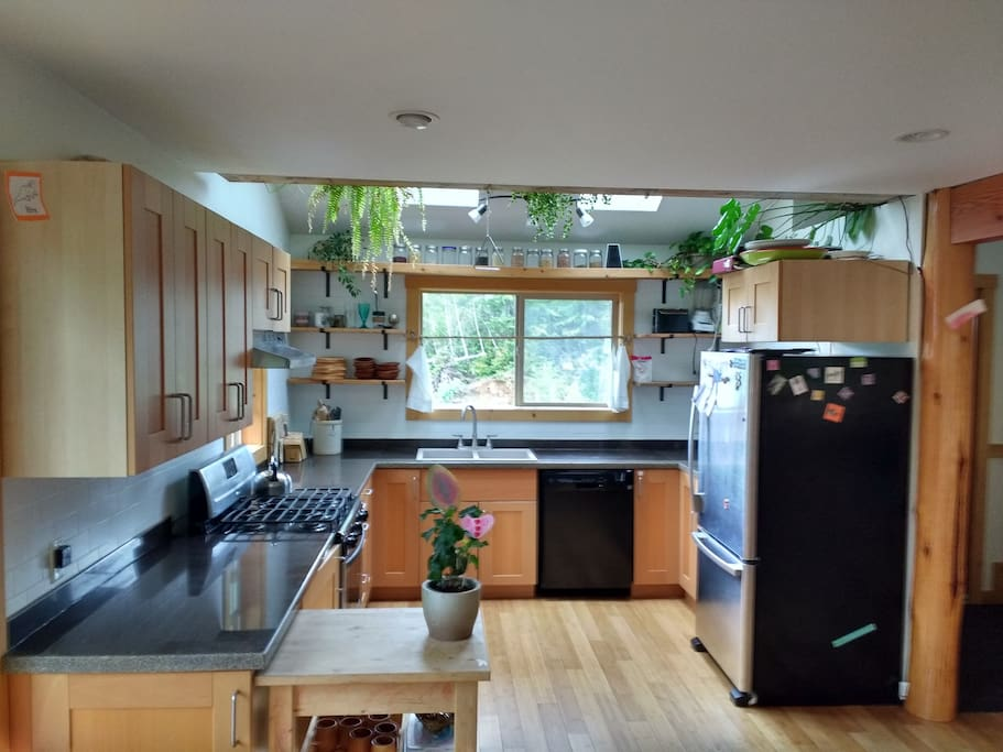 Bright, clean south facing kitchen with skylights