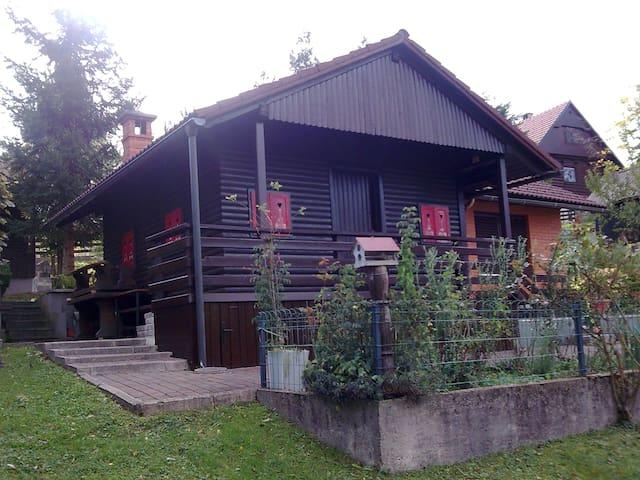 Uršika Zala - Žlebe - House