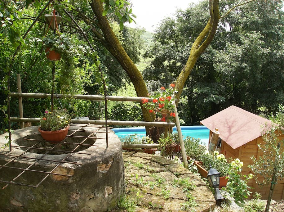 the well and pool