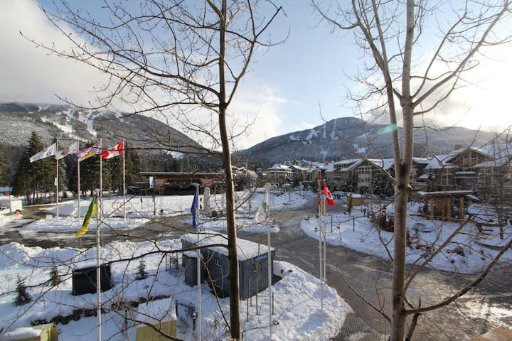 1B/1B Whistler Village apartment - amazing view!