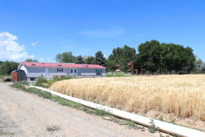100 Acre Farm Close to Cody