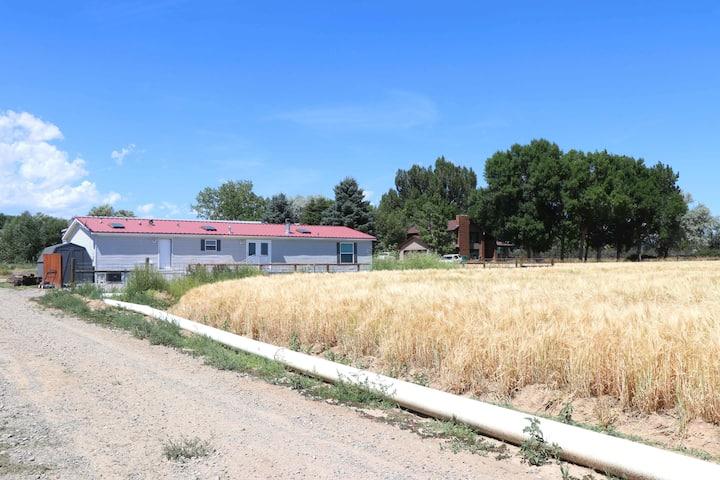 100 Acre Farm Near Cody