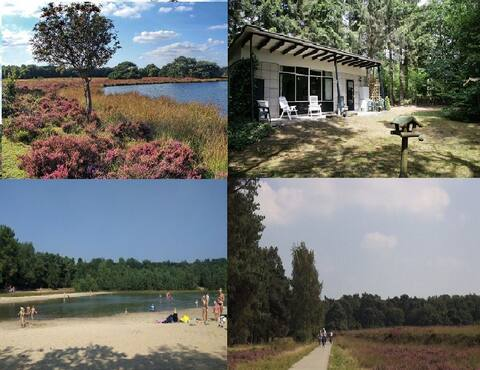 Bungalow in bossen van Drenthe natuur en rust