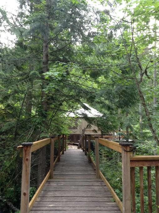 Bridge over the creek to the yurt get away