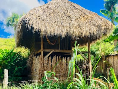 ECO-cabin above the lake in Ometepe